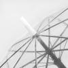 paraguastransparentedetalle395345.jpg