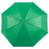 paraguaspersonalizado4673verde.jpg